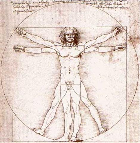 el Hombre de Vitrubio según Leonardo